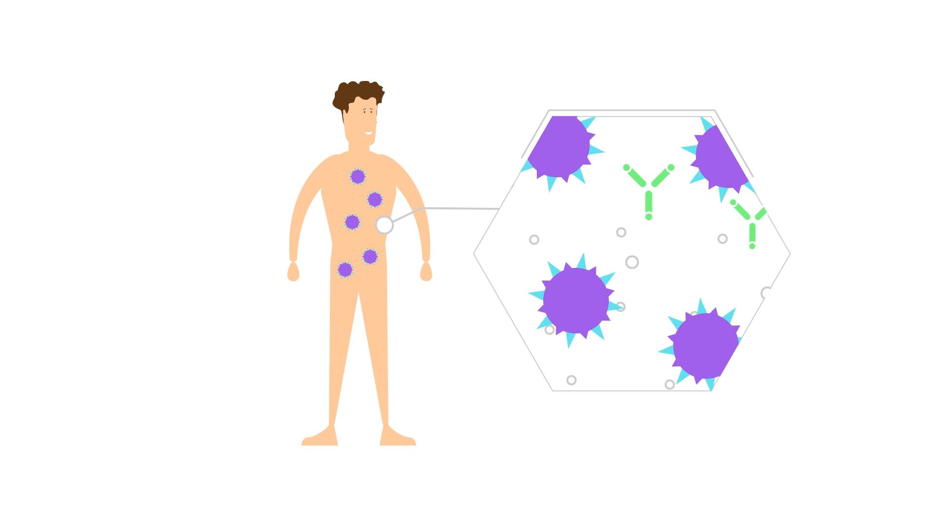 hepatitis-b-virus-verbreitung